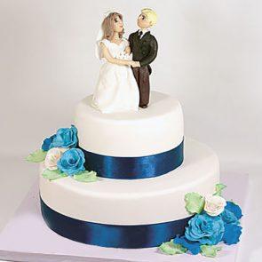 Жених и невеста (04-СВ)